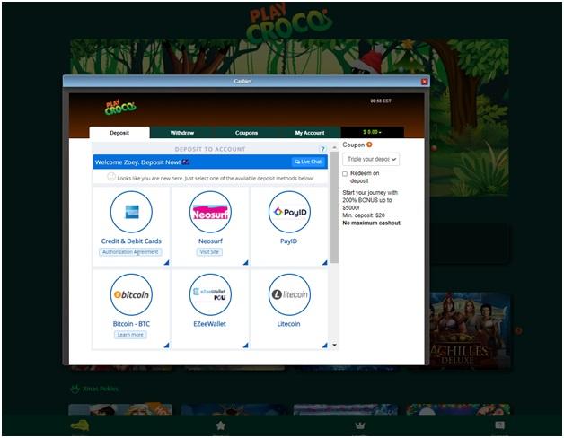 Banking at Play croco
